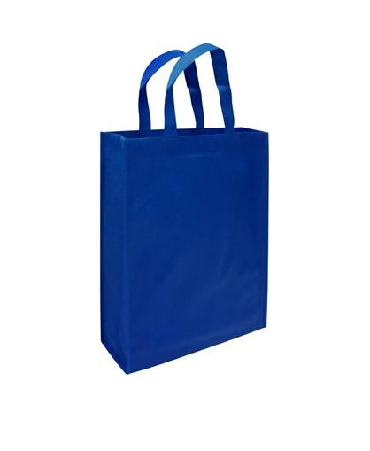 bolsa ecologica  congreso azul rey