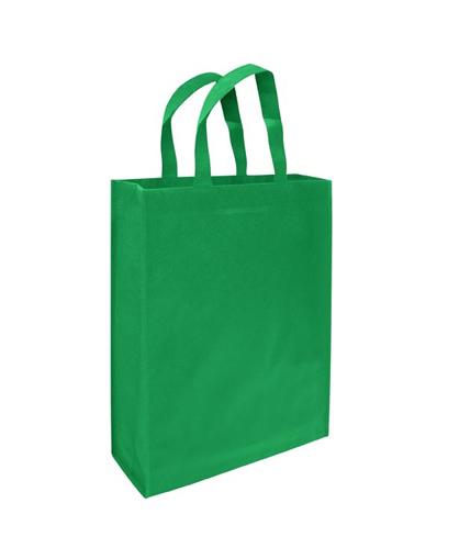 bolsa ecologica congreso verde